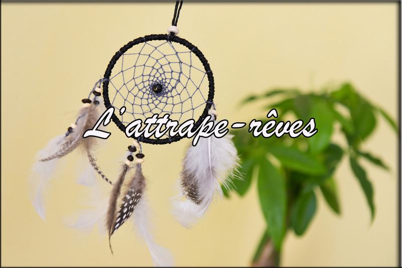 Attrape-Rêves Dreamcatcher